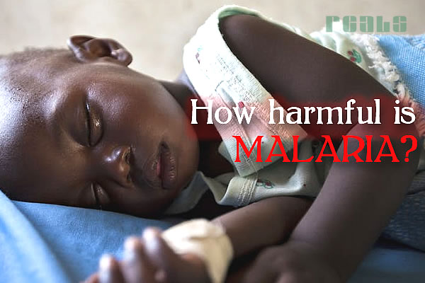 How Harmful is Malaria?